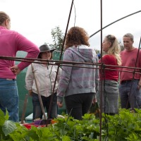 Transition Town Guildford's Kitchen Gardeners' Society Launches!