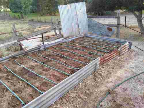 4th May - Bed dug over with manure and clay, ready to plant Garlic.