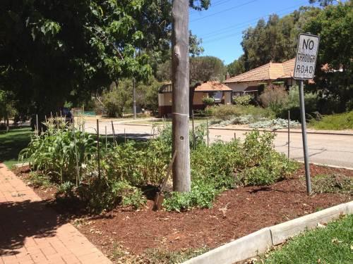 Verge gardens