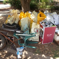 Community Clean Up Day: Lack of Rubbish Disappoints Children